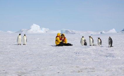 Антарктида — путешествие для