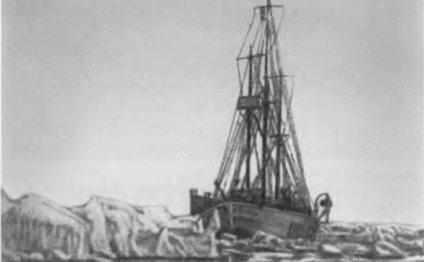 Новая экспедиция Амундсена