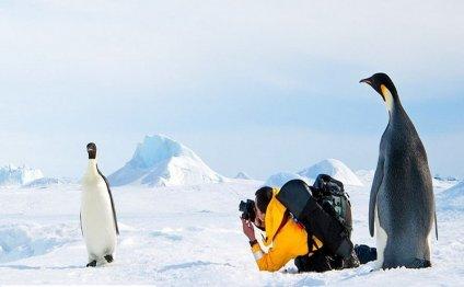 Арктика, экстремальный туризм