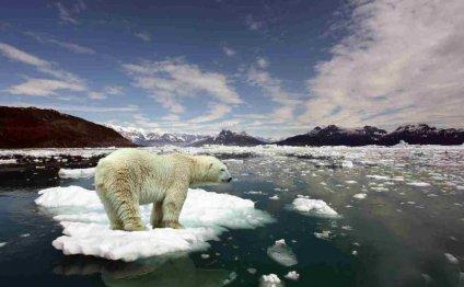 Температура в Арктике достигла